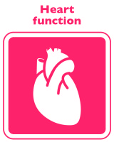 Heart_Function-160x200